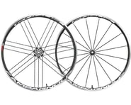 Campagnolo Eurus Wheelset (Black) (700c) (QR x 100/130mm) (Clincher) | relatedproducts