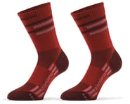 Giordana FR-C Tall Lines Socks (Sangria) | product-related
