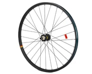 "Mavic Deemax DH 29"" Rear Wheel (Boost) (XD) | relatedproducts"