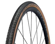 Ritchey Alpine JB Comp Tire (700c) (Black/Tan) | relatedproducts