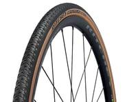 Ritchey Alpine JB Comp Tire (700c) (Black/Tan) (700 x 30) | alsopurchased