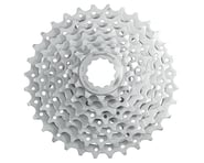 Sunrace CSM66 8sp Cassette | relatedproducts
