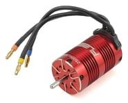 Dynamite Fuze V2 1/8 6-Pole Sensorless Brushless Motor (2500kV) | relatedproducts