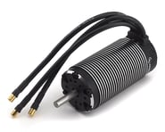 Hobbywing EZRUN 56113SL 4-Pole 1/5 Scale Sensorless Brushless Motor (800kV) | relatedproducts