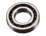 Rear Bearing: 19XZ-B Speed | relatedproducts