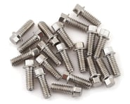 SSD RC 2x5mm Scale Hex Bolts (Silver) (20) | alsopurchased