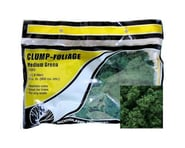 Woodland Scenics Clump-Foliage Bag, Medium Green/55 cu. in. | alsopurchased