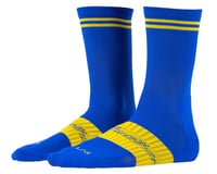 Bellwether Victory Socks (Royal)