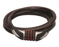 Blackburn Angola Combo Cable Lock | alsopurchased