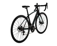 Image 2 for Fuji Bikes Fuji Brevet 1.3 Disc Women's Road Bike - 2017 (Carbon)