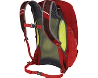 Image 2 for Osprey Radial 34 Commuter Backpack (Lava Red) (S/M)