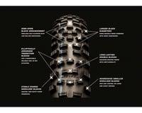 Image 4 for Schwalbe Hans Dampf HS491 Addix Speedgrip Tire (SnakeSkin/TL Easy Apex) (27.5 x 2.60)