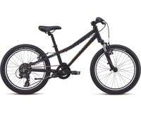 Specialized 2019 Hotrock 20 (Black/74 Fade) (9)