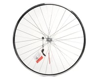 Sta-Tru Mavic Open Sport / Shimano 105 5800 Road Front Wheel