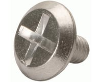 Troy Lee Designs Aluminum Helmet Visor Screw (Silver)