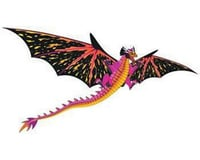 Brain Storm Products Wind N Sun  3D Dragon Kite