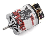 Team Brood Specter Hand Wound 540 3 Segment Dual Magnet Brushed Motor (35T) | alsopurchased