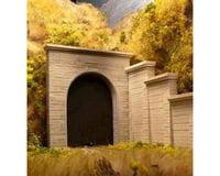 Chooch N Single Concrete Tunnel Portal