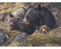 Cobble Hill Puzzles Cobble Hill 80012 Twice the Love 1000 Piece Bears Jigsaw Puzzle