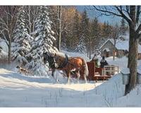 Cobble Hill Puzzles 1000Puz Sugar Shack Horses