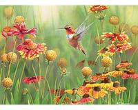 Cobble Hill Puzzles 500Puz Rufous Hummingbird