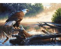 Dimensions 91379 Eagle Hunter PBN