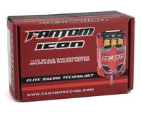 Fantom ICON Team Edition Spec Brushless Motor (17.5T)