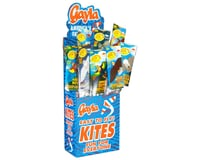 Gayla Industries Wildlife Wing Flapper Kite Asst (24)