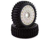 JConcepts Magma Pre-Mounted 1/8 Buggy Tires w/Cheetah Wheel (White) (2)