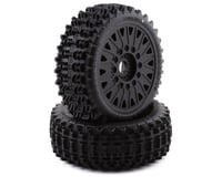 JConcepts Magma Pre-Mounted 1/8 Buggy Tires w/Cheetah Wheel (Black) (2)
