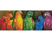 Needle Art World Rainbow Parrots 30.3 X 11.8