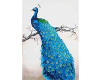 Needle Art World Needleart World Blue Peacock Diamond Embroidery Kit