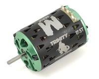 """Image 1 for Trinity """"Monster Max"""" ROAR Spec Brushless Motor (17.5T)"""