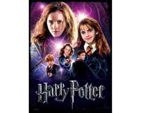 WREBBIT 3D Hermione Granger Poster Puzzle (500 Pieces)