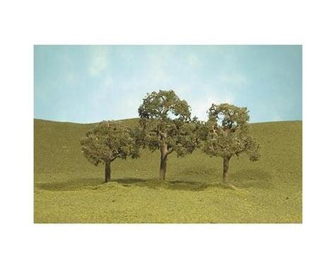 """Bachmann SceneScapes Walnut Trees (2) (5"""")"""