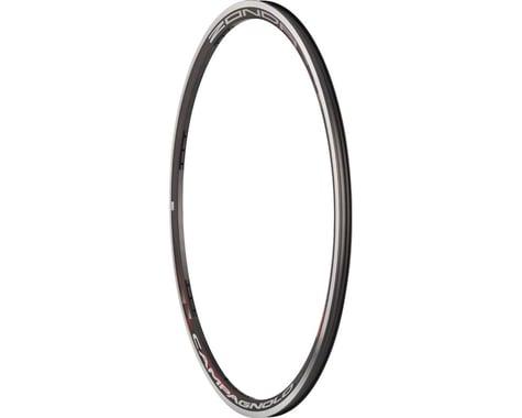 Campagnolo Zonda Rear Rim (Black) (700c) (21H)