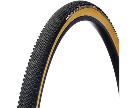 Challenge Dune Pro Tire - 700 x 33, Tubular, Black/Tan, 300tpi