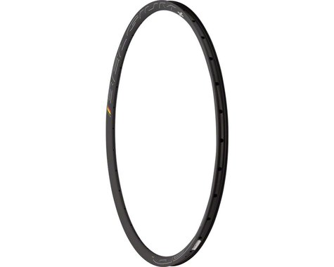 Hed Belgium Plus 700c Rim (Black) (28H) (Disc)