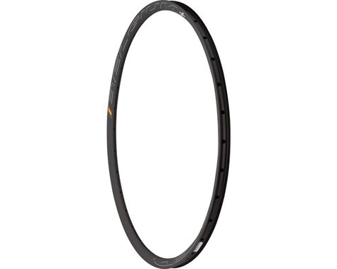 Hed Belgium Plus Disc Rim (Black) (700c) (32H)