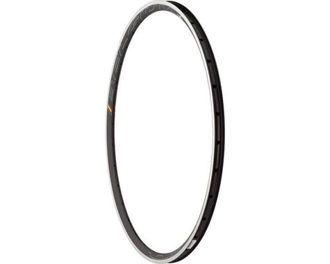 Hed Belgium Plus Rim (Black) (700c) (28H)