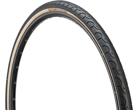 Kenda Kwest Tire (Black/Tan) (700 x 38)