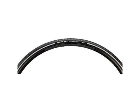 Panaracer T-Serv Protite Tire - 700 x 25, Clincher, Folding, Black/Reflective, 6