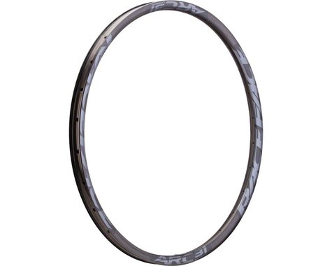 "Race Face Arc 31 Carbon Disc Rim (Black) (29"") (32H)"