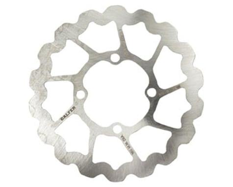 Rohloff Speedhub Disc Brake Rotor (4-Bolt) (1) (160mm)