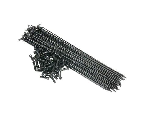 Salt PG Spokes (Black) (40 Pieces) (184mm)