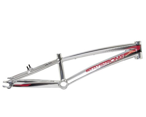 Stay Strong For Life V2 Bike Frame (Polished)