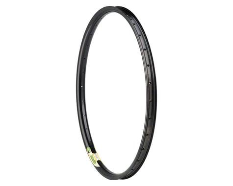 Velocity Blunt 35 Rim - 700, Disc, Black, 36H, Clincher