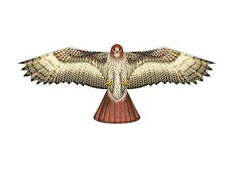"Brain Storm Products 70"" Hawk - Supersized Bird of Prey Nylon Kite w/Winder, by Wind-n-Sun"