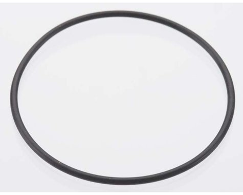Back Plate O-Ring: DLE-20