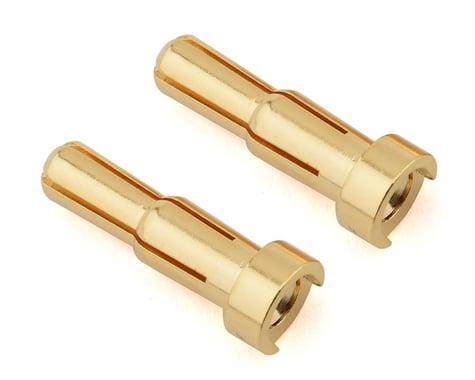 Ruddog 4/5mm Dual Gold Male Bullet Plug (2)